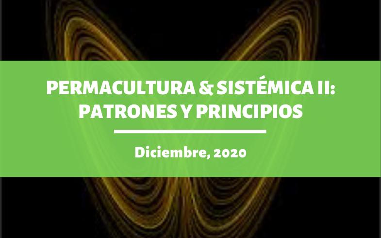 PERMACULTURA & SISTÉMICA II: Patrones y principios